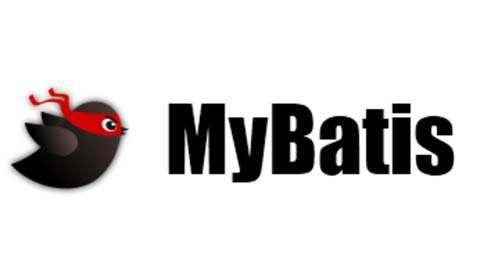xml配置mybatis映射注意事项
